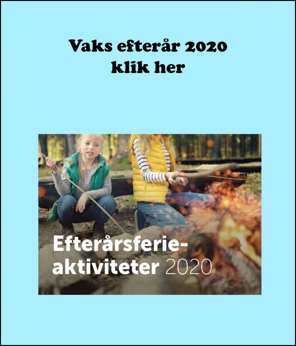 Vaks efterår 2020 - 2021 vs 2